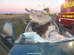 ヘラジカ交通事故