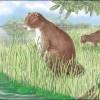 古代に生息した体長3mの巨大ネズミ