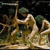 20世紀に発見された未開部族タサダイ族